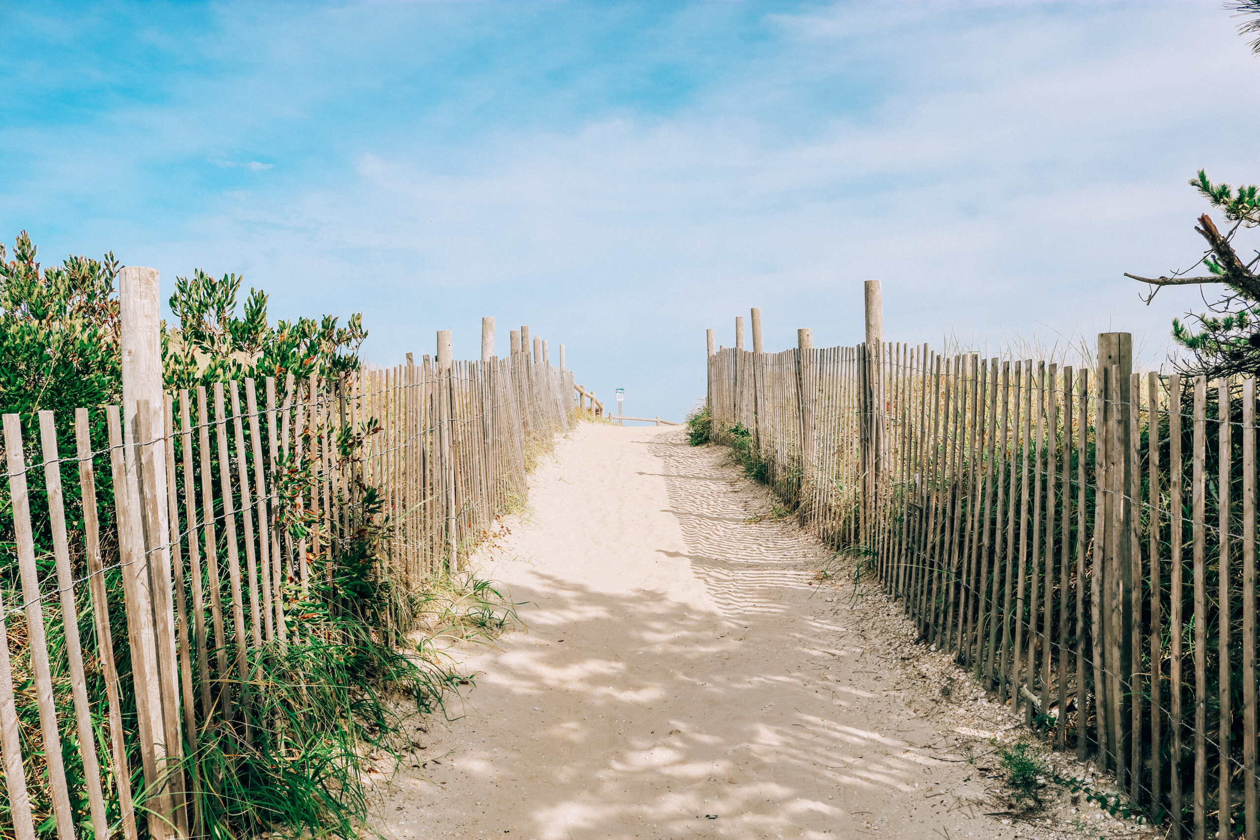 LBI Region Beach for the About Moira page